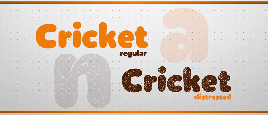 CRICKET_01